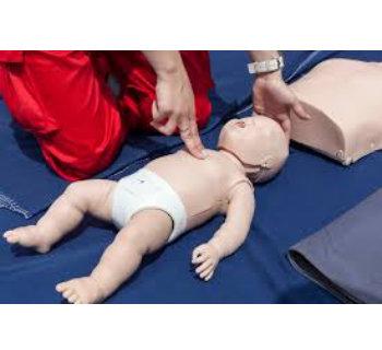 A baby plastic model